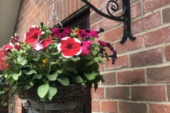 Hanging basket bracket